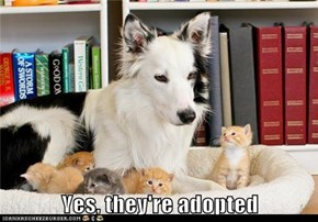 Yes, they're adopted