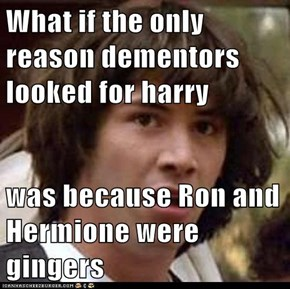 What if the only reason dementors looked for harry   was because Ron and Hermione were gingers