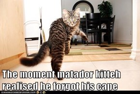 The moment matador kitteh realised
