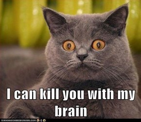 Lolcats: I can kill you