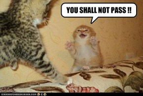 YOU SHALL NOT PASS !!
