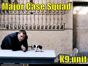Major Case Squad  K9 unit