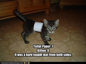 Toilet Paper: 1Kitten: 0It was a hard fought war from both sides.