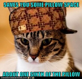 Scumbag Cat: I Should Be Cool Cat Craig for Giving That Much