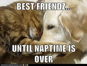 BEST FRIENDZ...  UNTIL NAPTIME IS OVER
