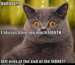 DARN IT!!! I always have too much MONTH left over at the end of the MONEY!
