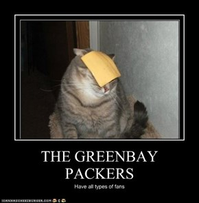 THE GREENBAY PACKERS