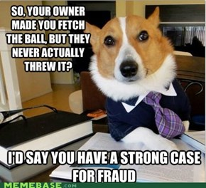 Lawyer Dog Holds This Ball in Contempt