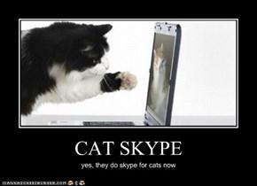 CAT SKYPE