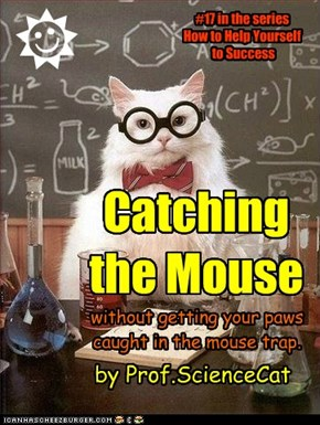 Catching the Mouse