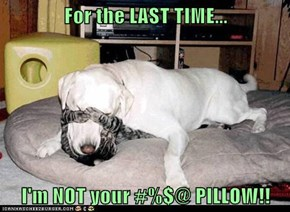 For the LAST TIME...  I'm NOT your #%$@ PILLOW!!