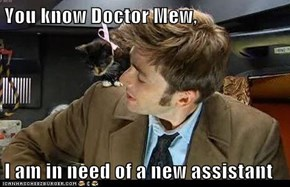 You know Doctor Mew,  I am in need of a new assistant