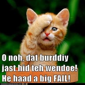 O noh, dat burddiy jast hid teh wendoe! He haad a big FAIL!