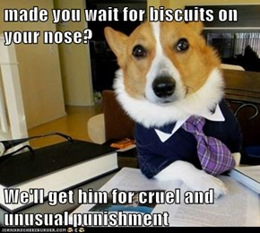 made you wait for biscuits on your nose?  We'll get him for cruel and unusual punishment