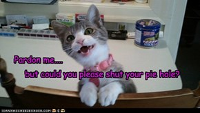 Polite kitty nawt so polite.