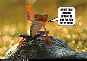 AND IF I AM ELECTED, I PROMISE ONE FLY FOR EVERY FROG.