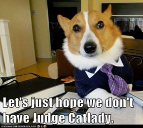 Let's just hope we don't have Judge Catlady.