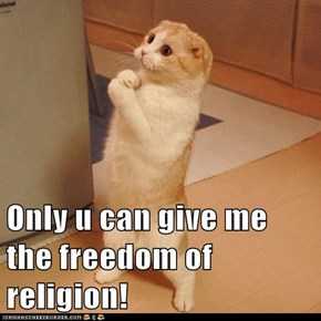 Only u can give me the freedom of religion!