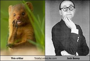 This critter Totally Looks Like Jack Benny