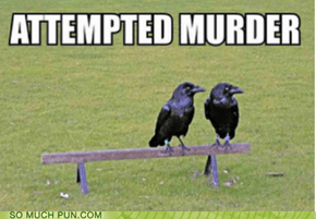 SMP CLASSIC: Attempted Murder