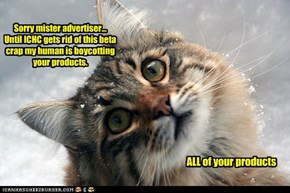 Sorry mister advertiser... Until ICHC gets rid of this beta crap my human is boycotting your products.