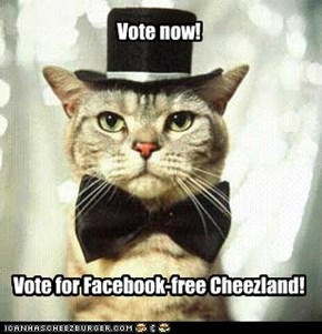 Your Cheezland needs you!