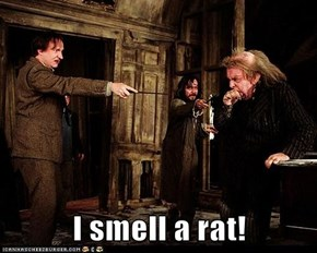 I smell a rat!