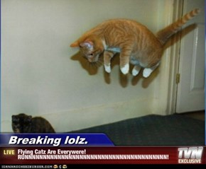 Breaking lolz. - Flying Catz Are Everywere! RUNNNNNNNNNNNNNNNNNNNNNNNNNNNNNNNNNNNNNNN!