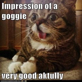 Impression of a goggie  very good aktully