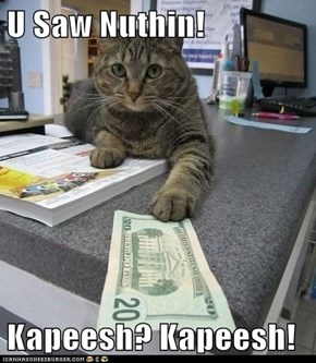 U Saw Nuthin!  Kapeesh? Kapeesh!