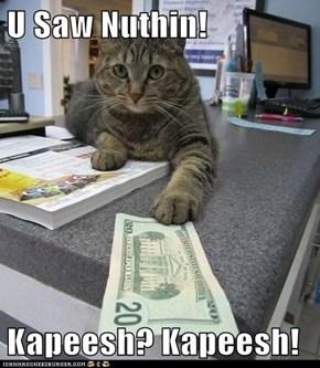U Saw Nuthin!  Kapeesh? Kapeesh!