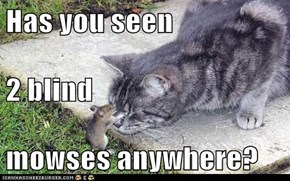 Has you seen 2 blind mowses anywhere?