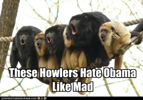 Howlers Reaction To Obama's Second Term In Office