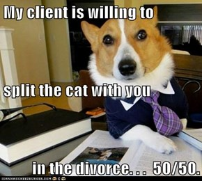 My client is willing to split the cat with you in the divorce. . .  50/50.
