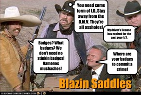 Where are your badges to commit a crime!