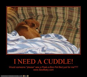 I NEED A CUDDLE!