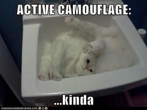ACTIVE CAMOUFLAGE:   ...kinda