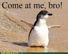 Nobody messes with baby penguins!