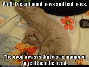 Lolcats: Well, I've got good news and bad news.