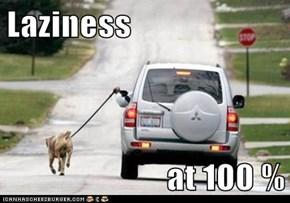 Laziness  at 100 %
