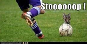 Stoooooop !