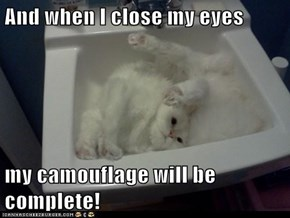 And when I close my eyes  my camouflage will be complete!