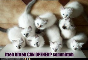 itteh bitteh CAN OPENER? committeh