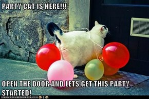 PARTY CAT IS HERE!!!  OPEN THE DOOR AND LETS GET THIS PARTY STARTED!