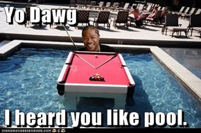 Yo Dawg  I heard you like pool.