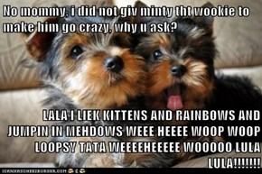 No mommy, i did not giv minty tht wookie to make him go crazy, why u ask?  LALA I LIEK KITTENS AND RAINBOWS AND JUMPIN IN MEHDOWS WEEE HEEEE WOOP WOOP LOOPSY TATA WEEEEHEEEEE WOOOOO LULA LULA!!!!!!!