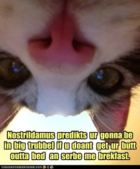 Nostrildamus  predikts  ur  gonna be  in  big  trubbel  if  u  doant   get  ur  butt  outta  bed   an  serbe  me  brekfast.