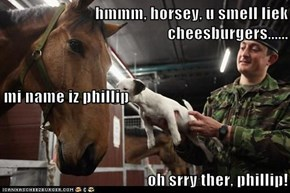 hmmm, horsey, u smell liek cheesburgers...... mi name iz phillip oh srry ther, phillip!
