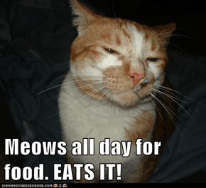Meows all day for food. EATS IT!