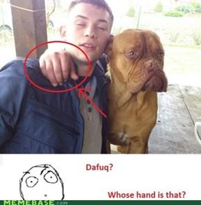 Dat Dogbro